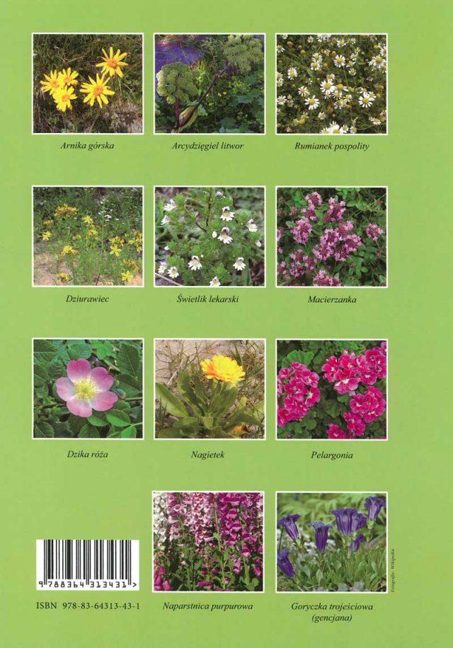 Kolorowanki – Spacery z Matką Naturą – niezwykłą zielarką część II